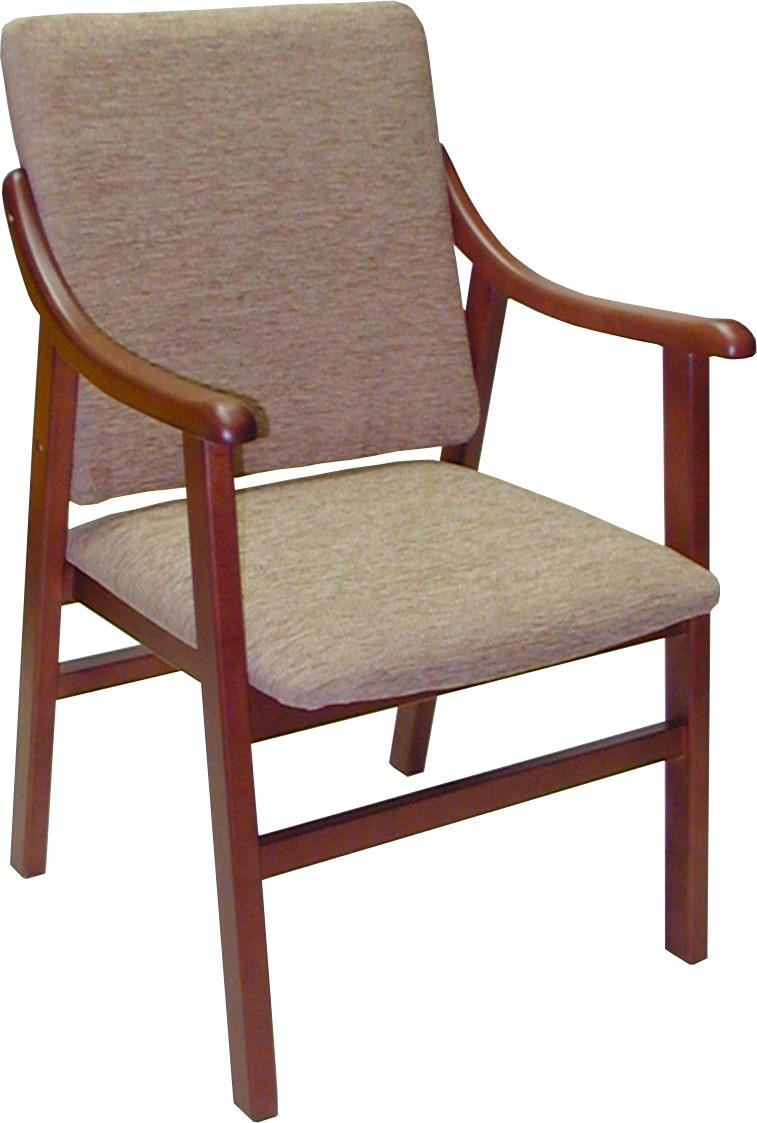 sillon-madera-salon-comedor-maciza-barras-tapizada-acolchada-haya ...
